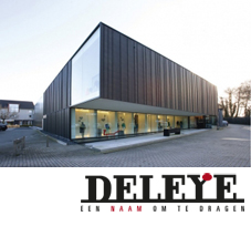 deleye-website